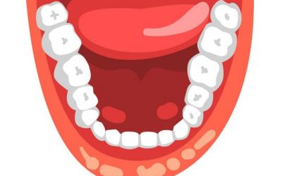 Human teeth, open mouth vector Illustration isolated on a white background.